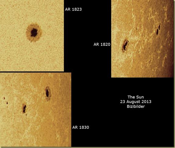 23 August 2013 AR close ups