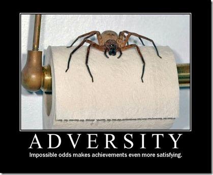 adversity-spider