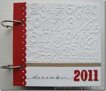 decdaily2011-cover