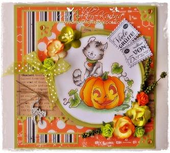 Kitty on Pumpkin