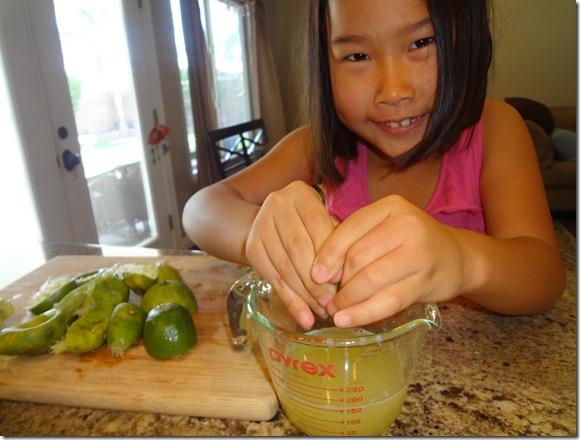 Cherry Limeade 012A
