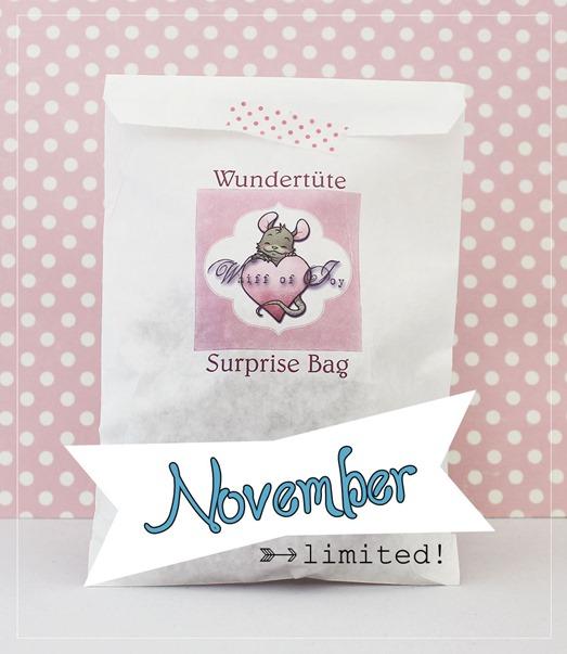 Wundertuete_SurpriseBagNovember13