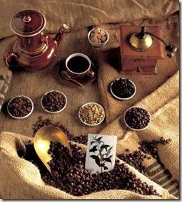 evolução do cafezinho