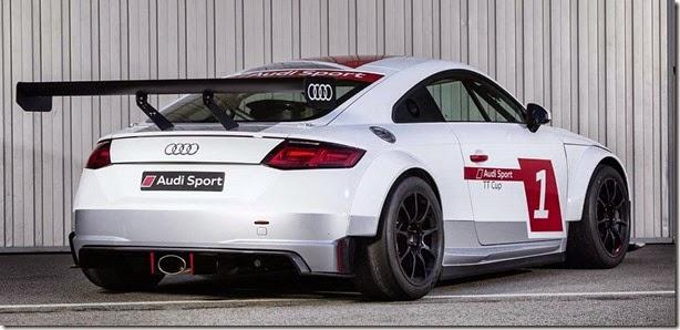 Audi TT de corrida (2)