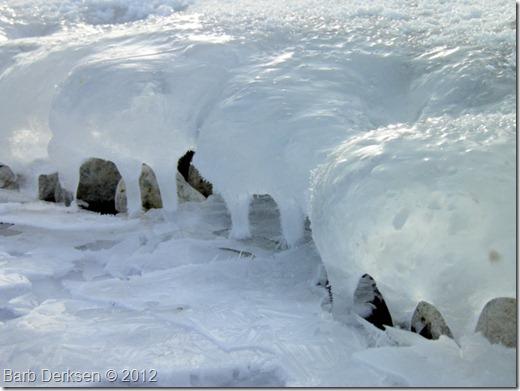 Barb Derksen Ice 2012  (8)