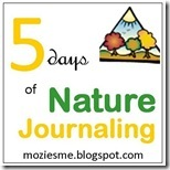 naturejournaling_thumb1