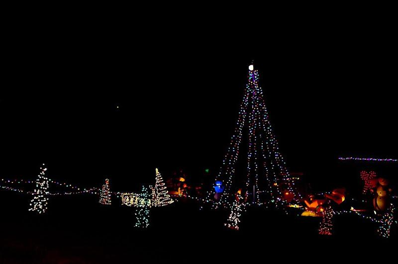 lights-3524