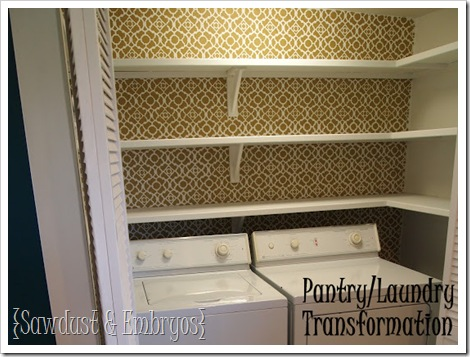 Pantry Shelving and Stencil