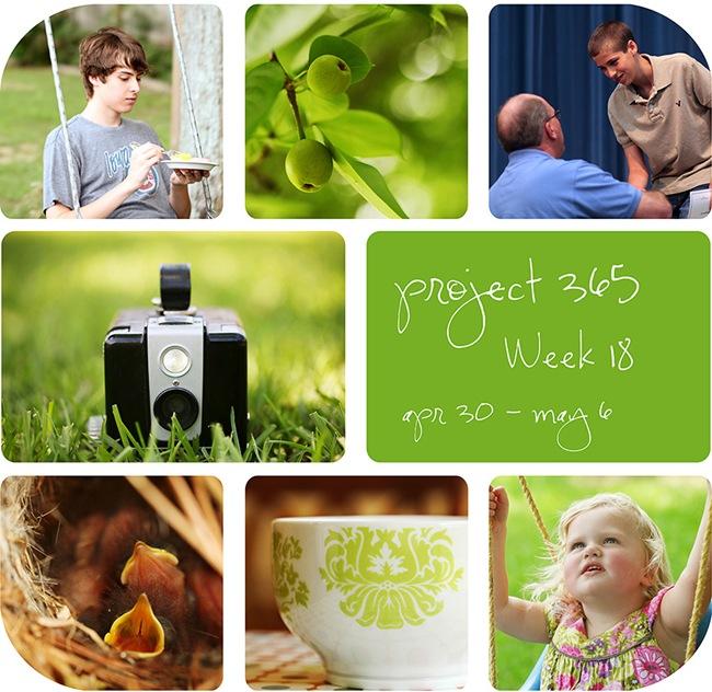 4week18
