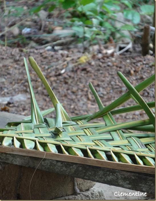 Feuille de palmier tresse