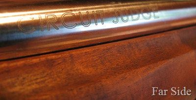 Circuit Judge Rifle and 45