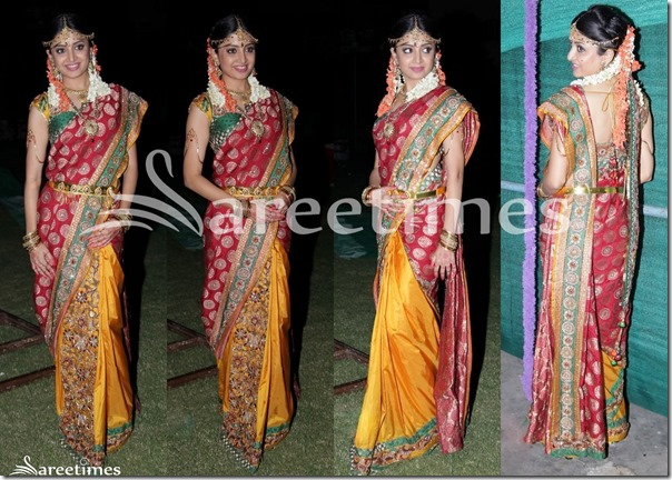 Poonam_Kaur_Half_and_Half_Silk_Saree