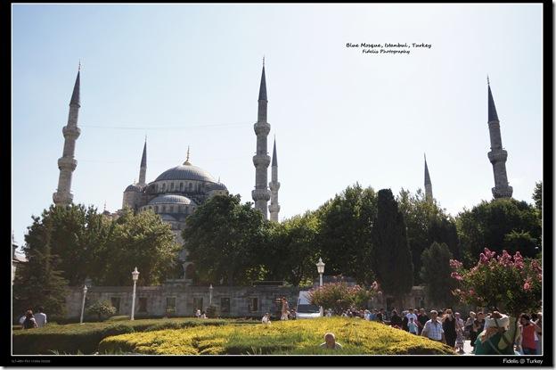 Turkey23