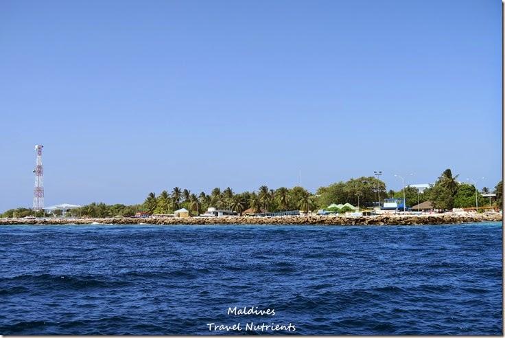 馬爾地夫居民島Mahibadhoo- Amazing Guesthouse (11)