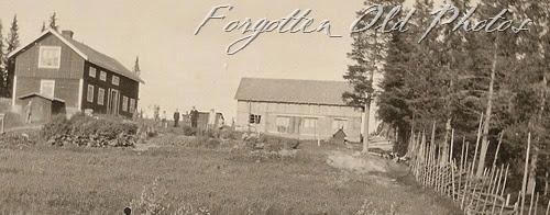 Farm Yard Duluth