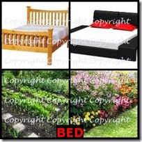 BED- 4 Pics 1 Word Answers 3 Letters