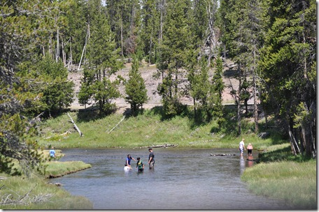 Yellowstone NP & Grizzly & Wolf Ctr 133