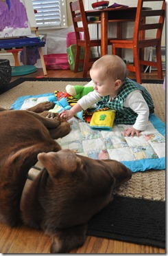 leighton loves gus 020113 (4)
