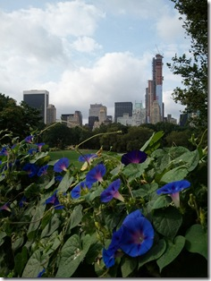 Central Park 9.2.12