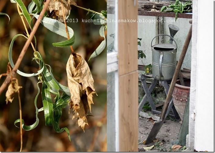 Połowa października, ścinanie mali, kopanie szklarni2