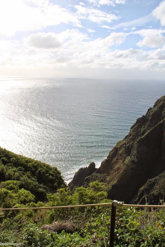 Madeira2014_13