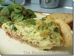 Bacon spinach quiche - The Backyard Farmwife