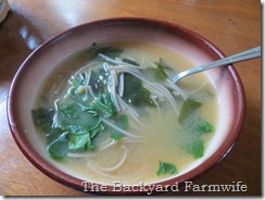 Miso Soup - The Backyard Farmwife