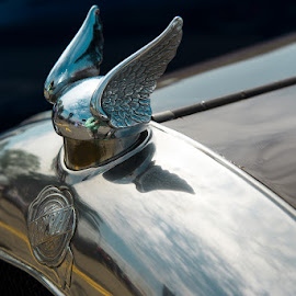 '24 Chrysler Hood Ornament by Michael Holser - Transportation Automobiles ( chrysler, hood ornament, '24, dream cruise )