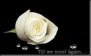Till we meet again....