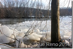 Susquehann River ice jam, by Sue Reno, Image 5
