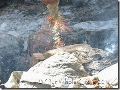 fire and sacrifice