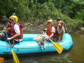 Pets Adventure 17 (103_1) (54)