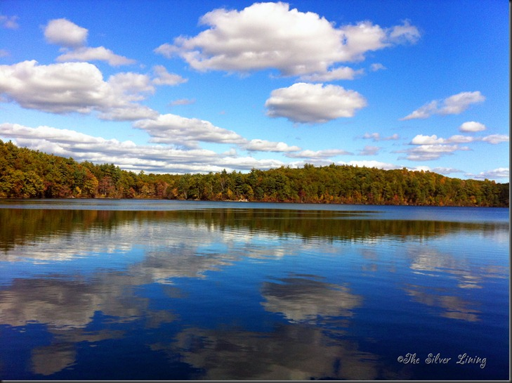 Walden's Pond 10-11