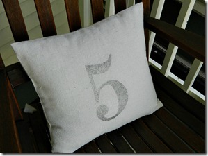 drop_cloth_number_5_pillow