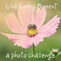 Live Everymoment