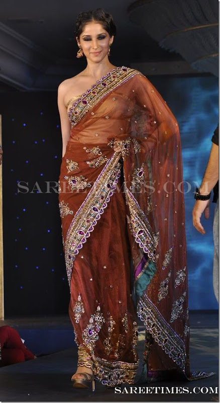 Brown_Designer_Saree