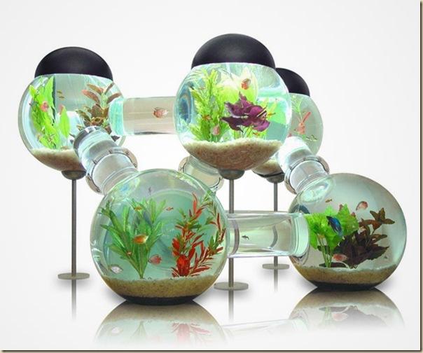 Aquariums créatifs et insolites-024