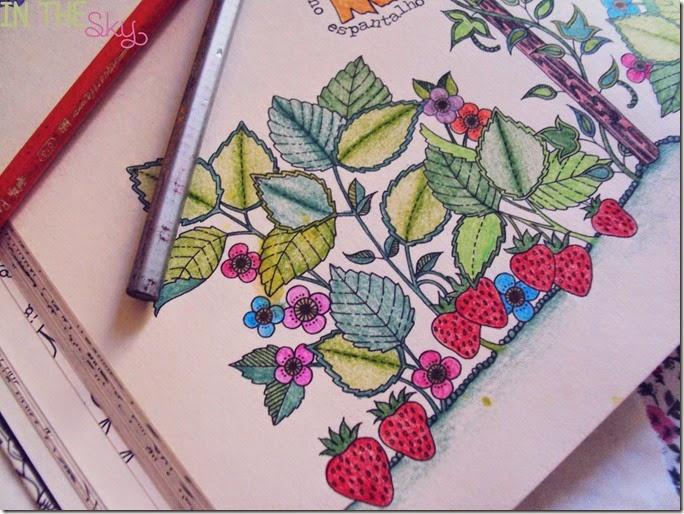 jardim secreto_06