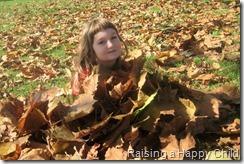 Nov23_Leaves
