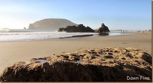 Harris Beach_156