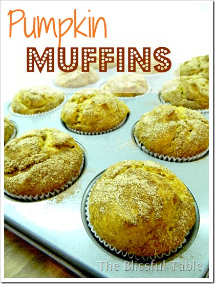 Pumpkin Muffins 007a