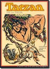 P00002 - Tarzan de Burne Hogarth #