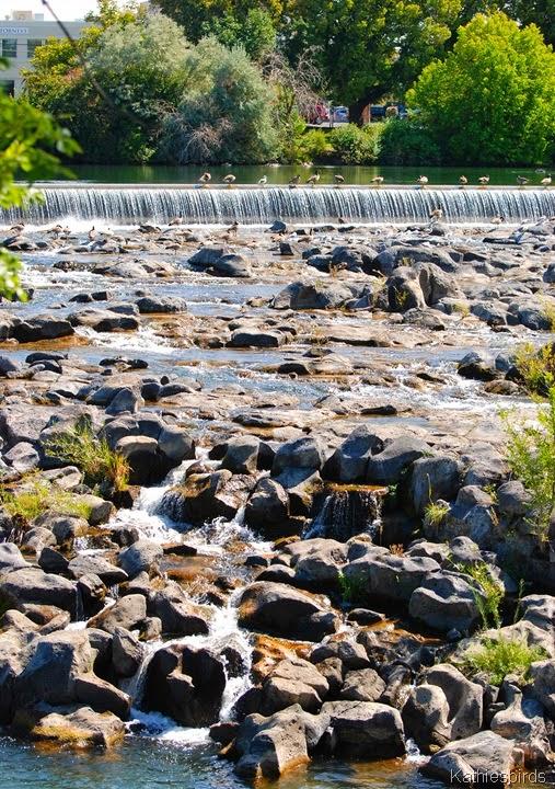 1. Idaho Falls-kab