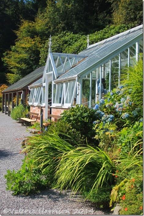 4-Greenhouse