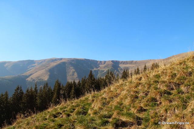 Munții Iezer-Păpușa