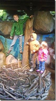 4 zoo 4-2014