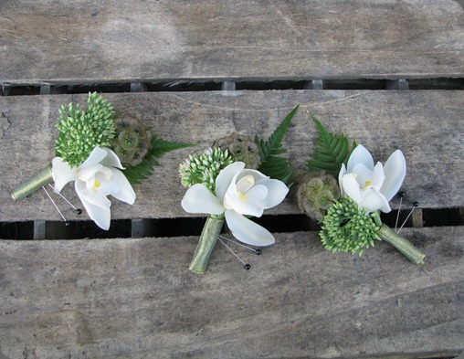 6163804644_550d4efb94_z valley flower company blogspot