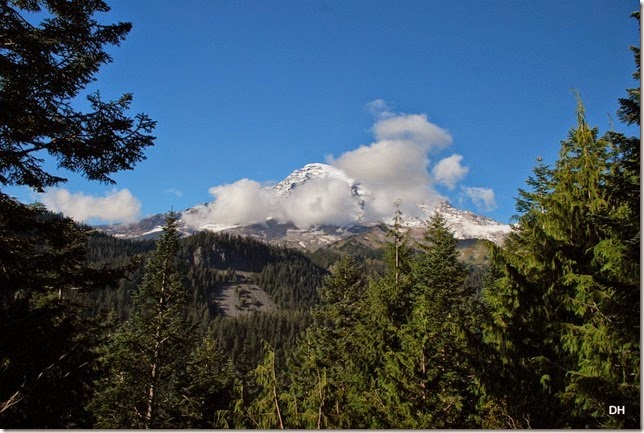 09-28-14 A Rainier NP (247)