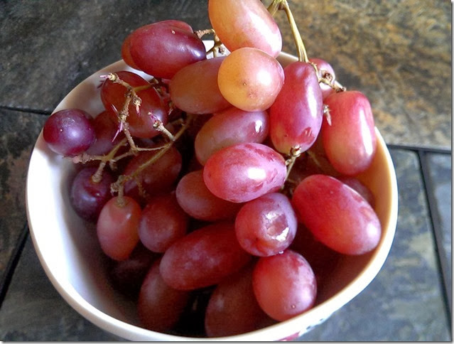 grapes-public-domain-pictures-1 (2291)