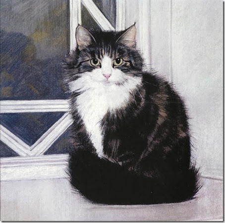 black pussie